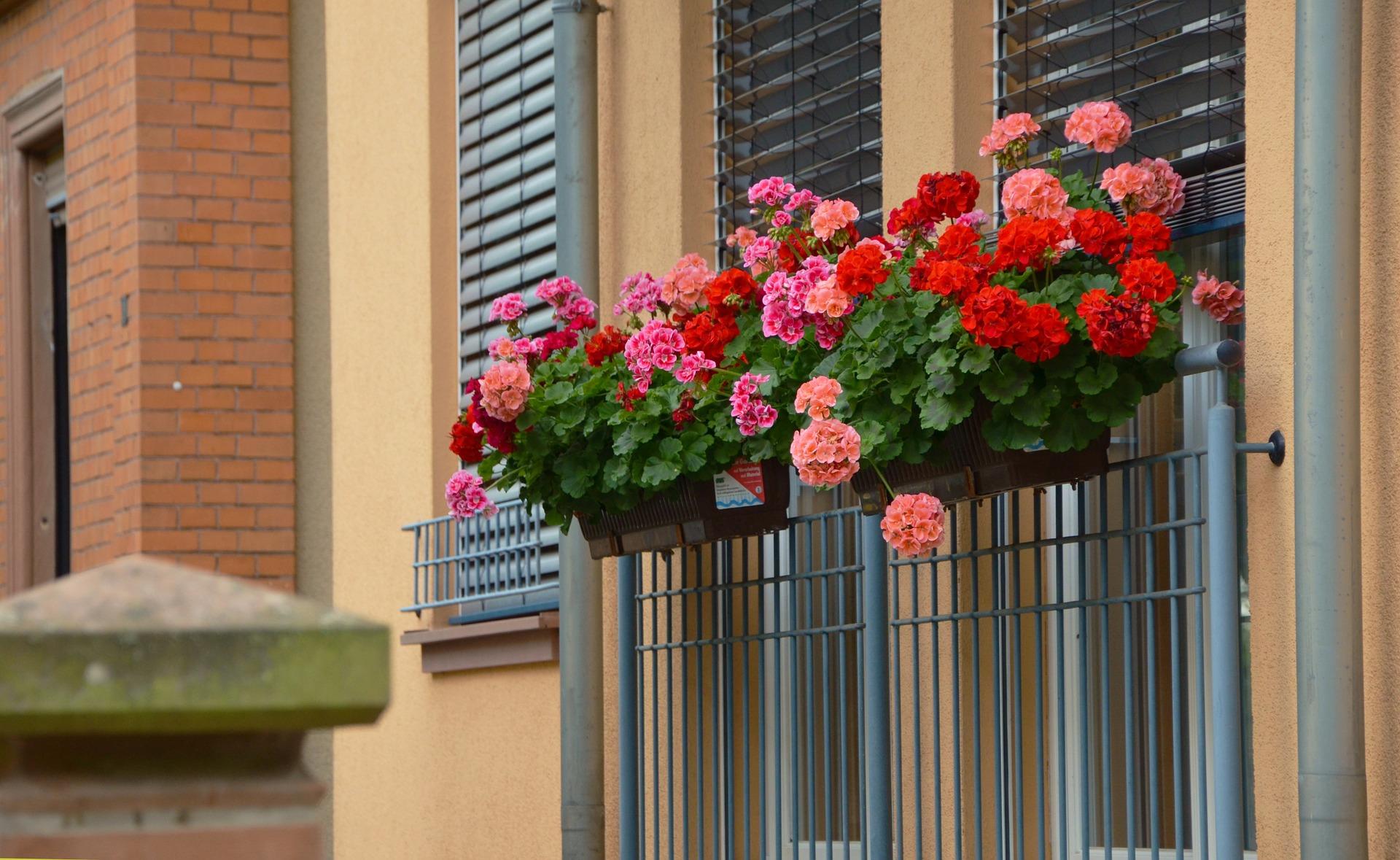 jak vyzdobyt balkon